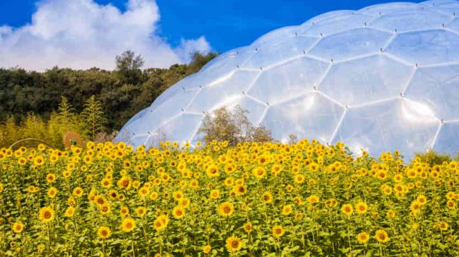 Cornwall's Eden Project